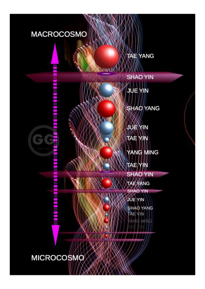 CIRCOLAZIONE ENERGETICA BY GIO - 1 - 1